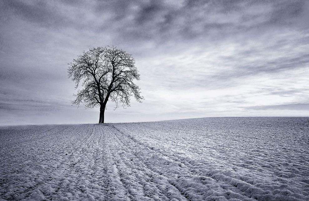 Впереди долгая зима