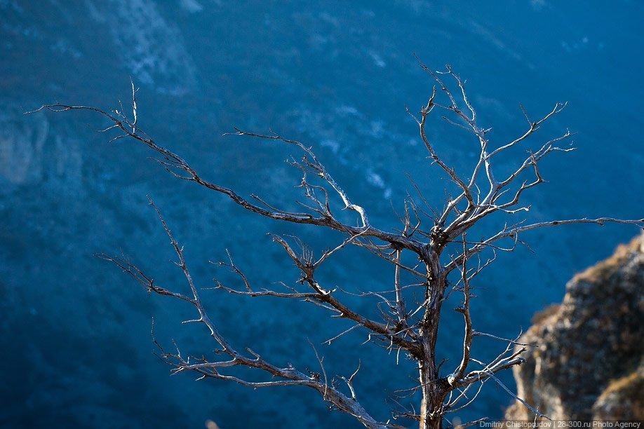 Большой Кавказ и природа Дагестана