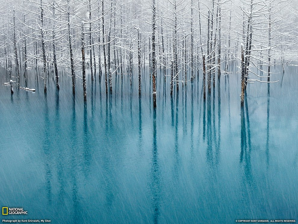 Голубой пруд, Хоккайдо