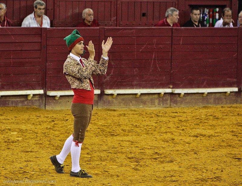 Торада — португальская коррида