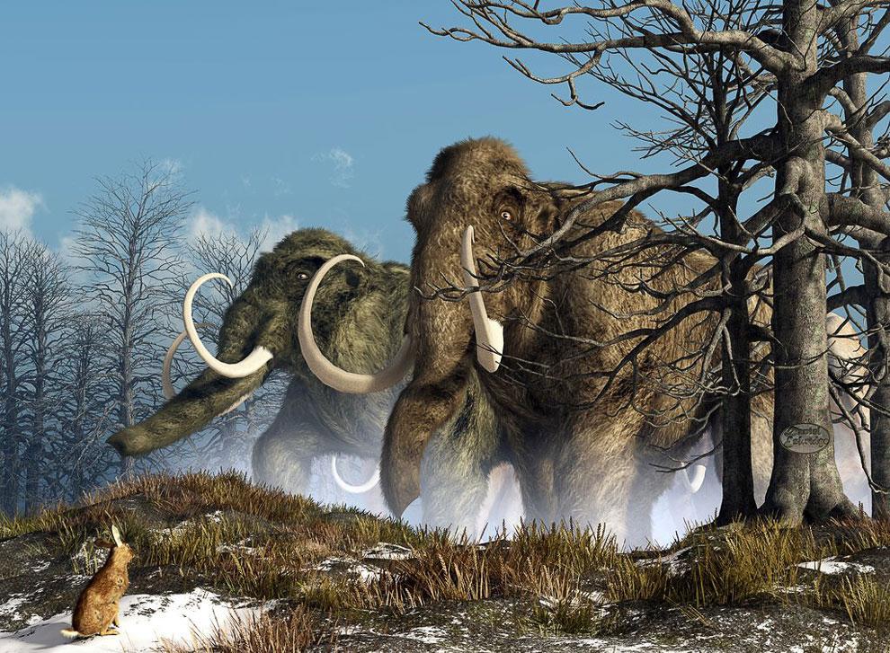 Охота на мамонтов