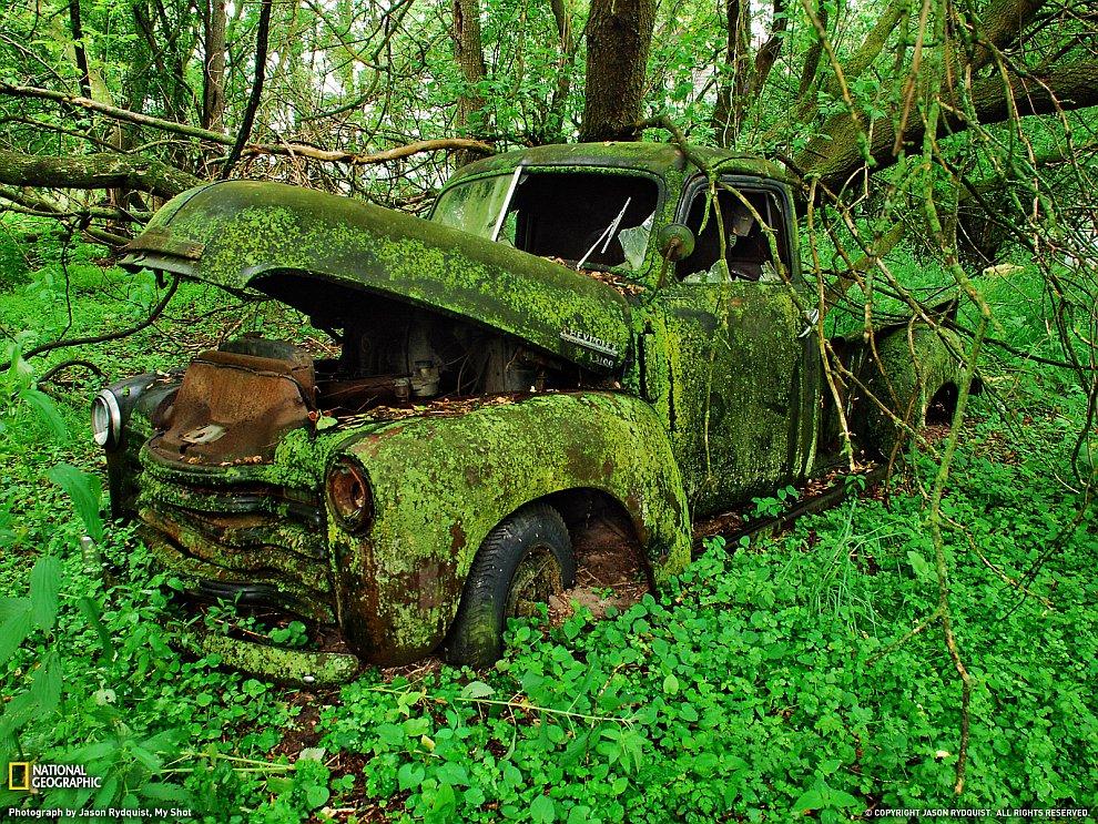 Старый пикап в лесах штата Мичиган