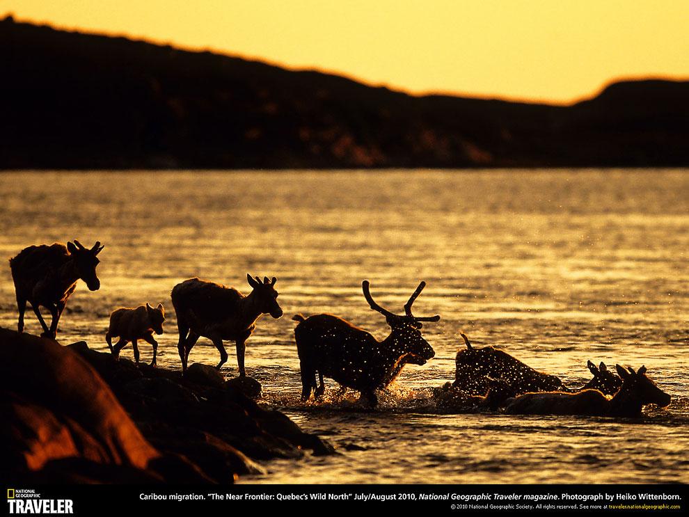 Путешествуем с National Geographic