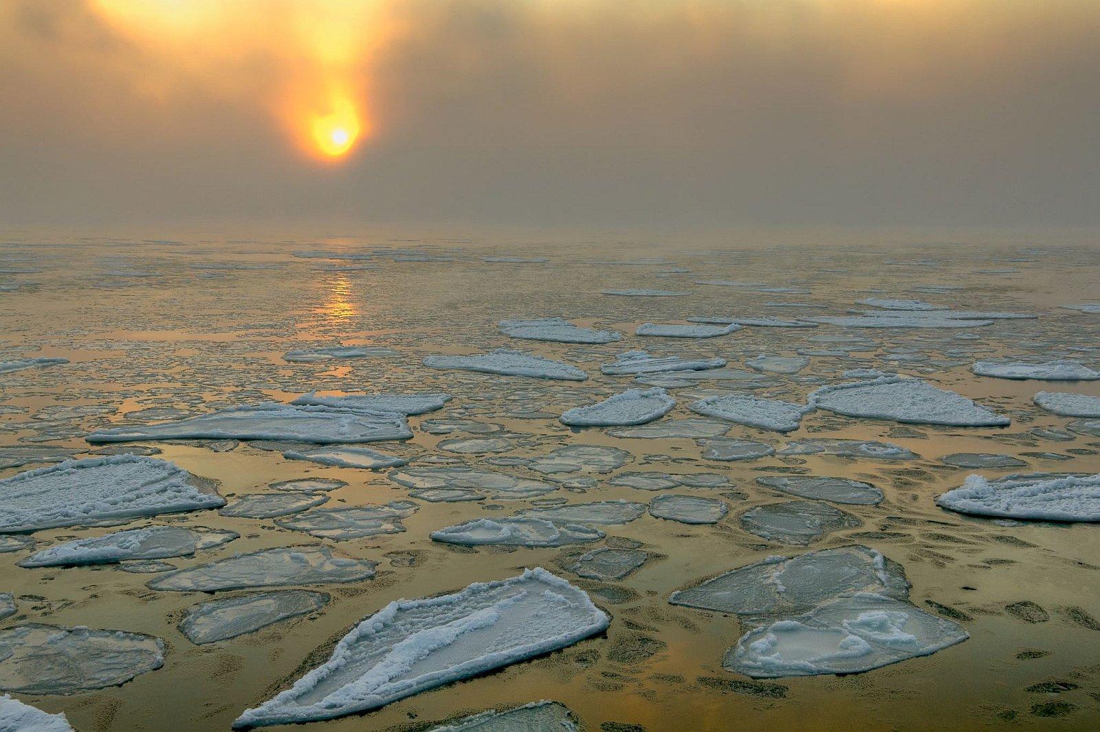 Картинки по запросу Черное море