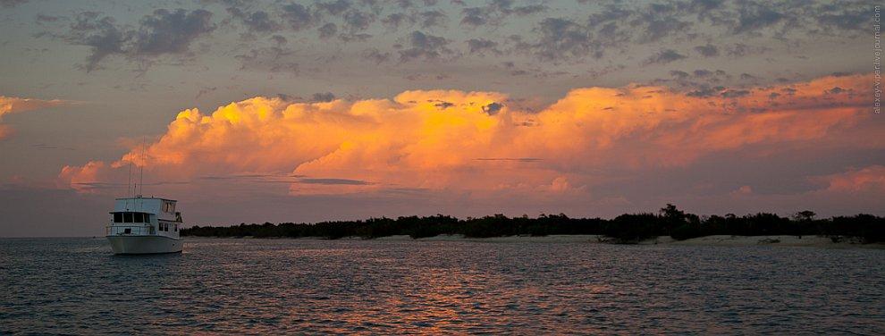 Куба: подводный мир в мангровых зарослях
