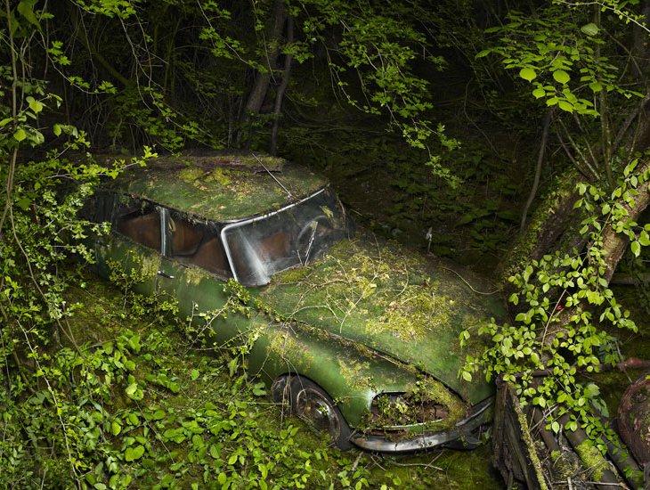 Парковка в раю