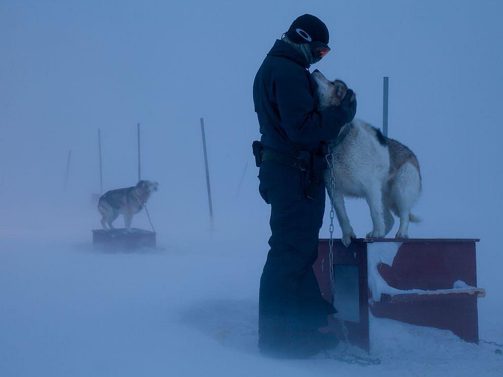 Хозяин и собака, Гренландия