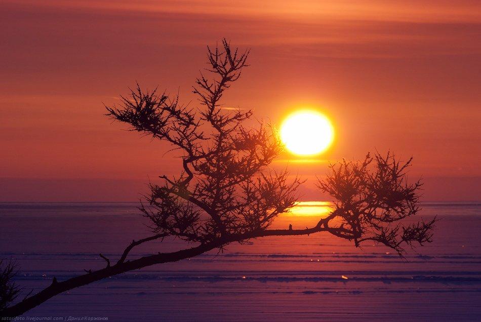 Рассвет зимой картинки красивые
