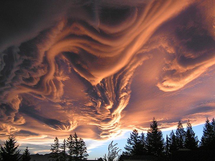 Редкие виды облаков