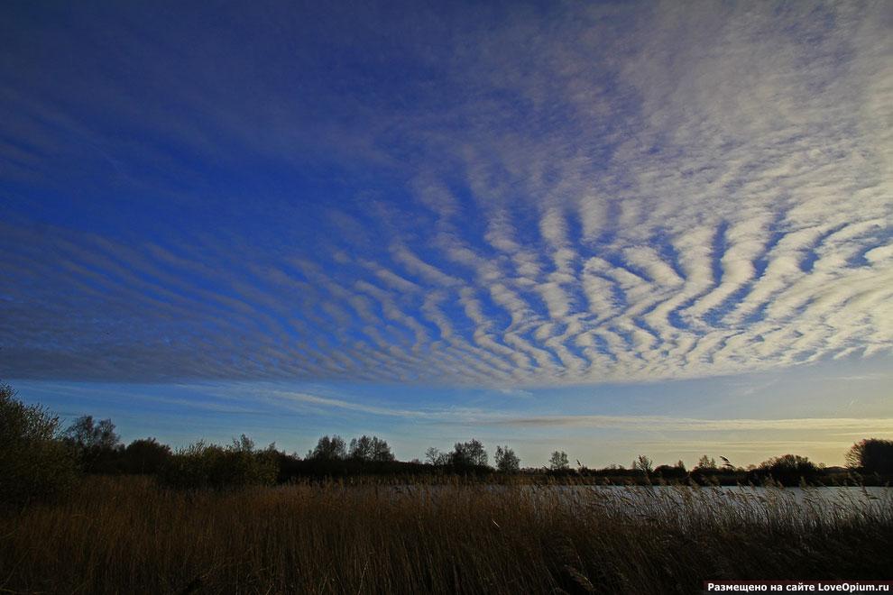 Редкие виды облаков (29 фото)