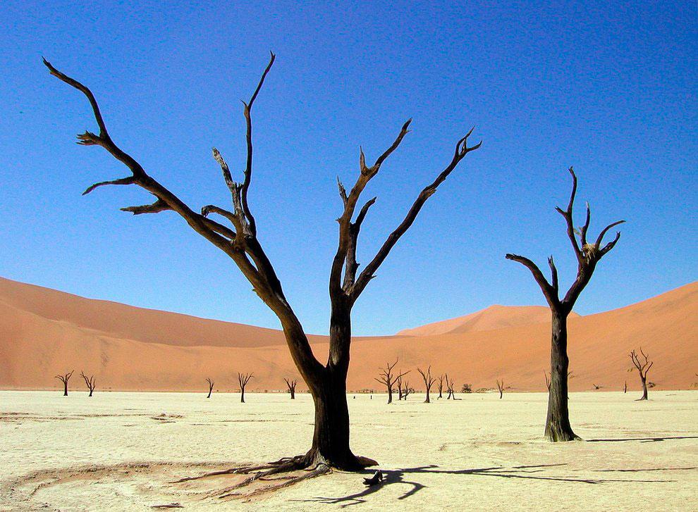 Мертвая долина в пустыне Намиб