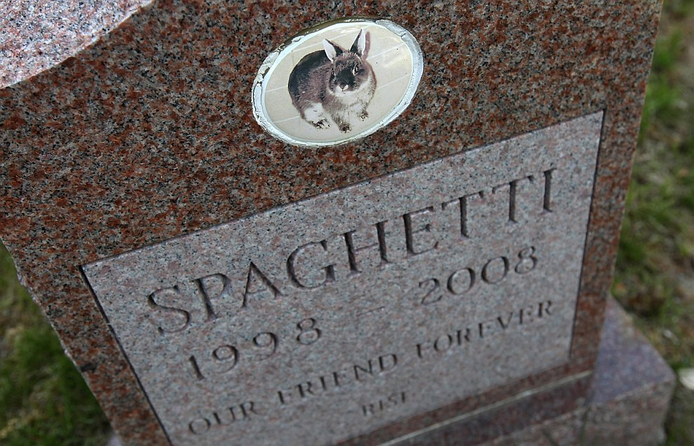 Старейшее в США кладбище для домашних животных