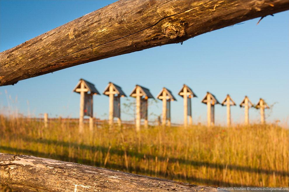 Кенозерский национальный парк
