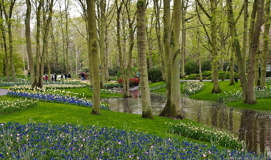 Сад Европы