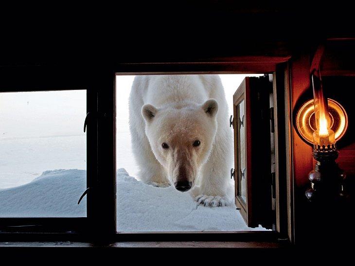 National Geographic: лучшие фотографии мая