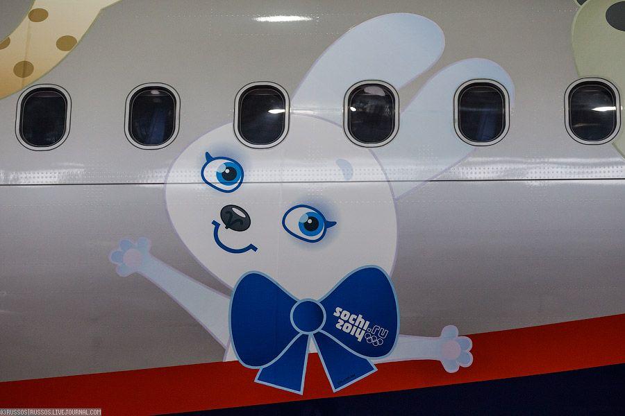 Самолеты и олимпийская символика Сочи 2014