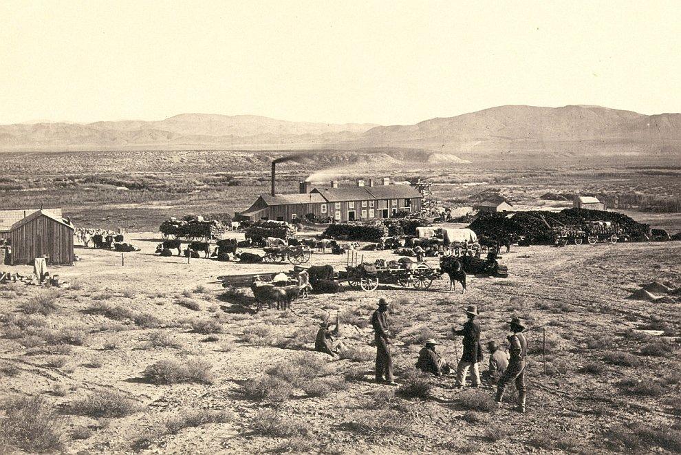 Природа Дикого Запада 150 лет назад