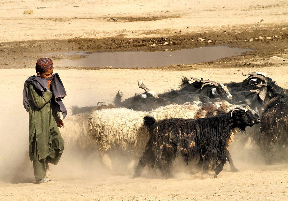 Афганистан в мае 2012: сцены из жизни