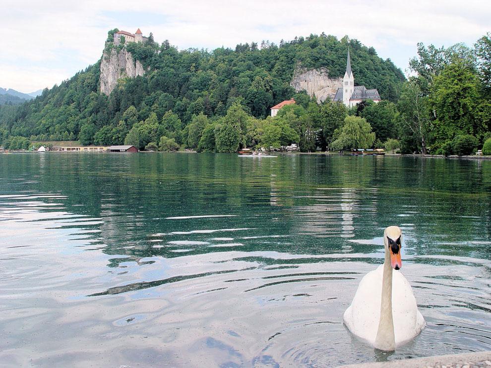 Легенды Бледского озера