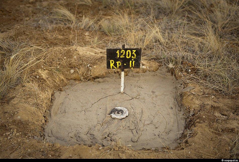 Cемипалатинский ядерный полигон: 20 лет спустя