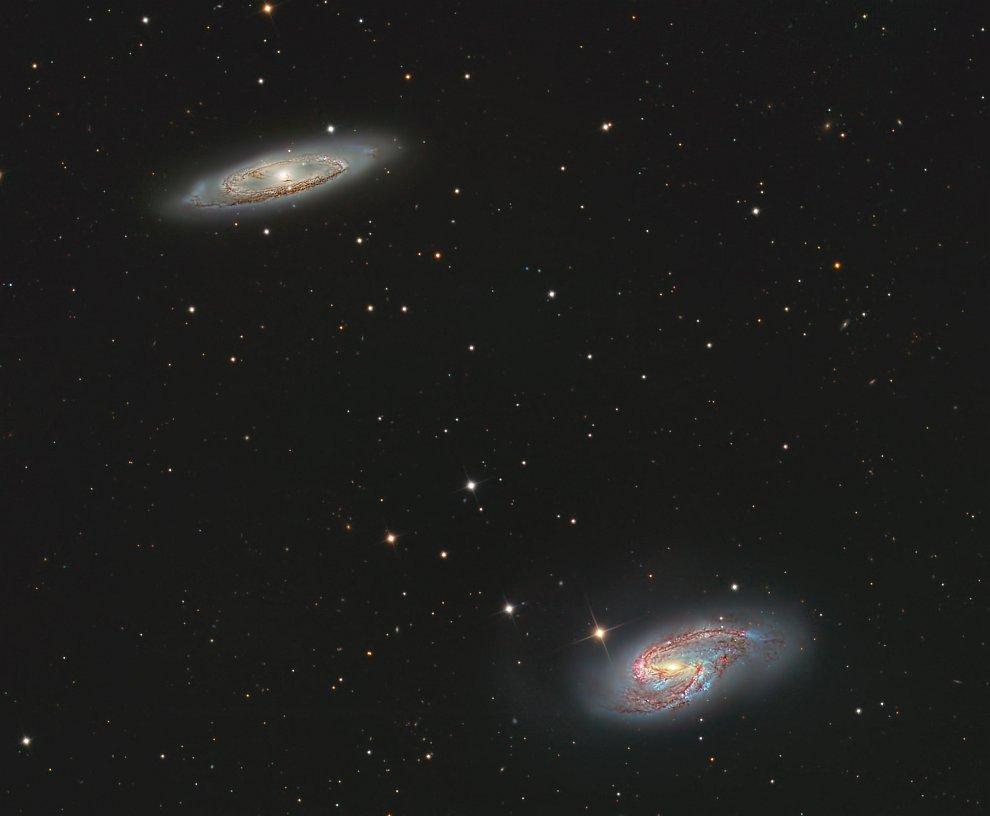 Спиральные галактики M65 (вверху) и M66