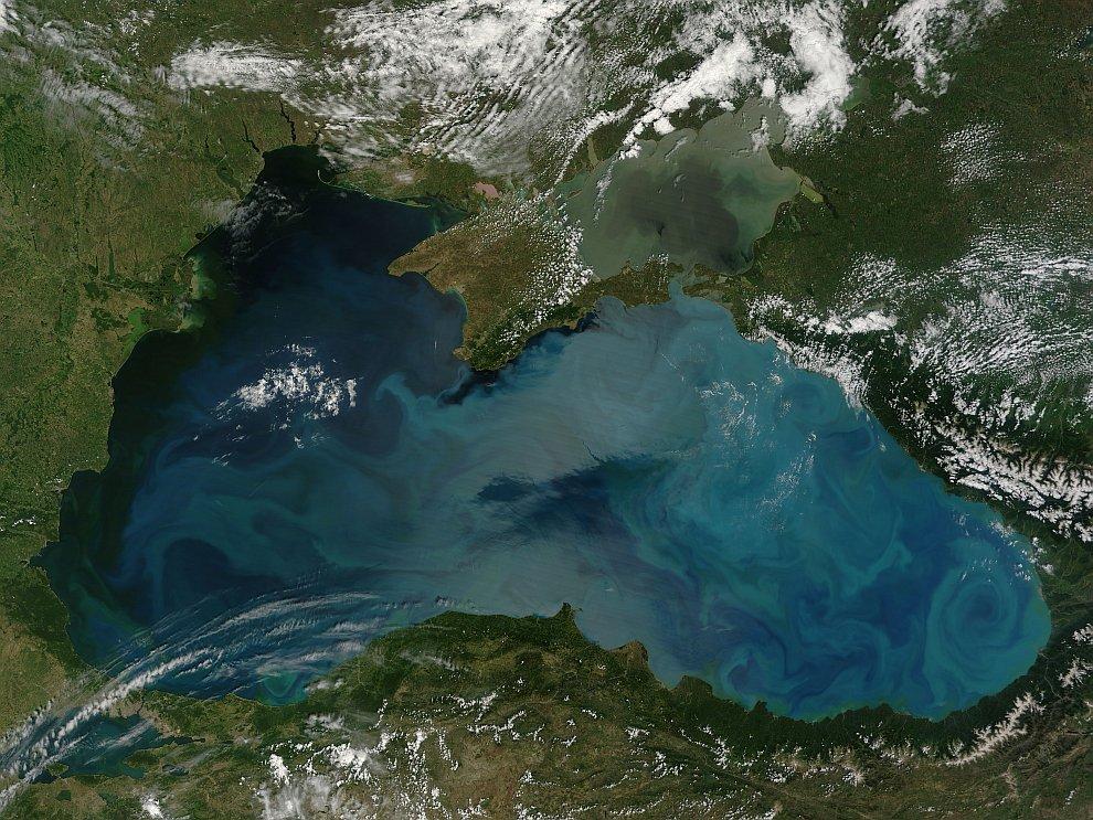 Цветение морской воды в Черном Море
