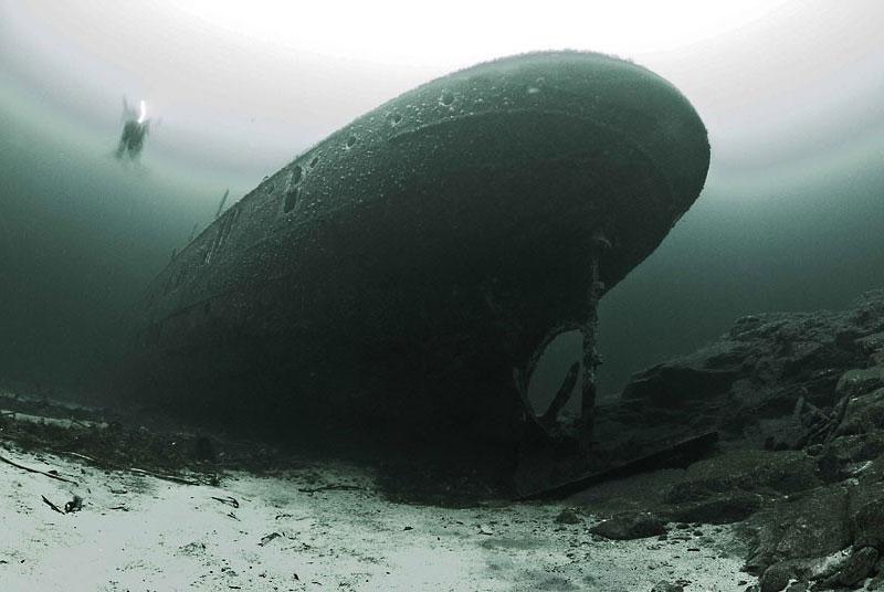 Победители конкурса подводной фотографии 2011/2012