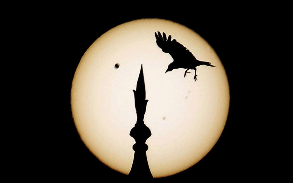 Прохождение Венеры по диску Солнца