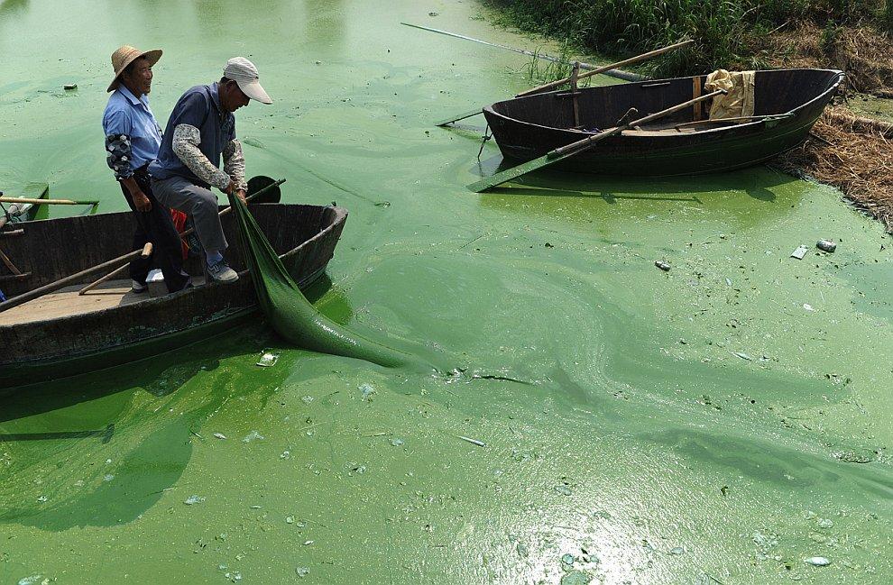 Озеро Чаоху — одно из крупнейших озер Китая