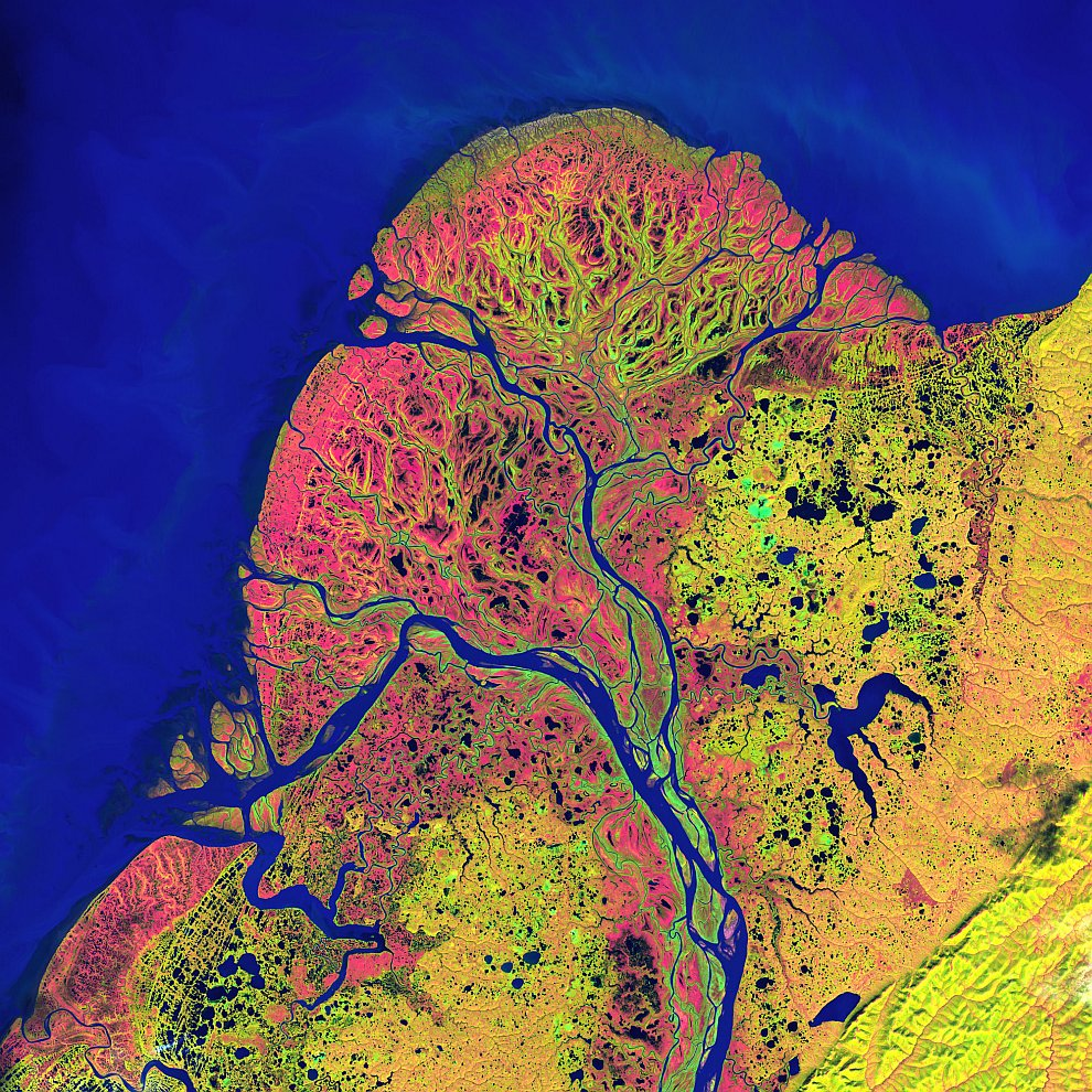 Дельта реки Юкон