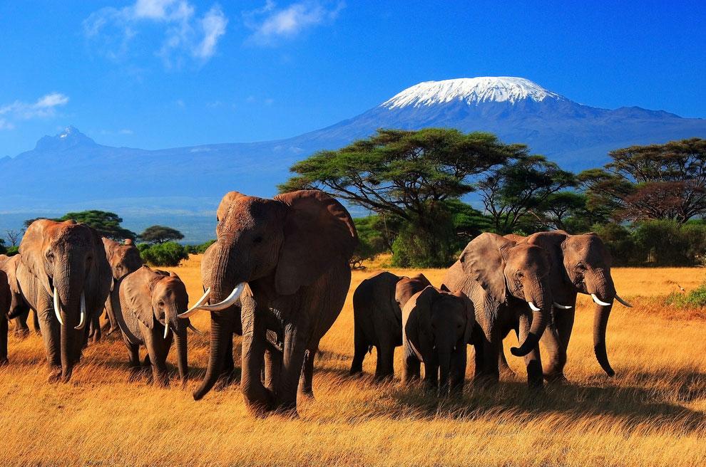 Африка — гора Килиманджаро, 5 895 м