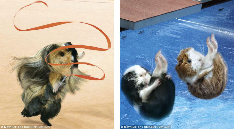 Художественная гимнастика (апрель) и прыжки в воду (сентябрь)