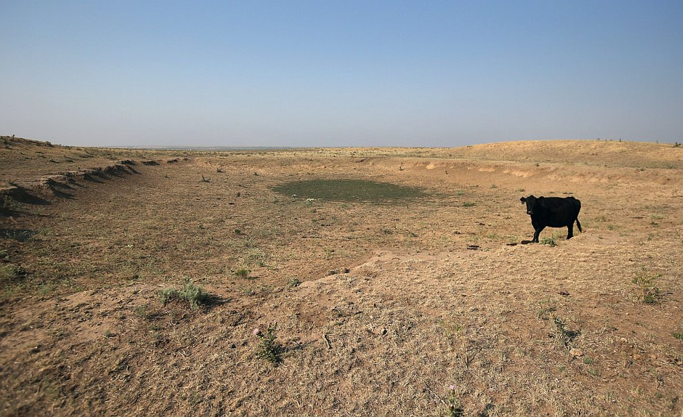 Великая засуха в Северной Америке