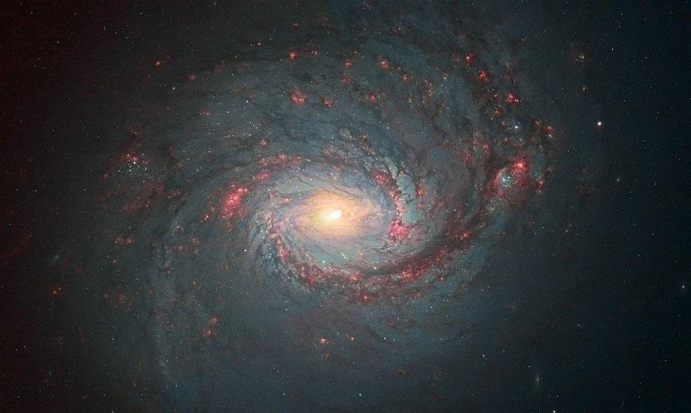 Спиральная галактика М77 в созвездии Кит