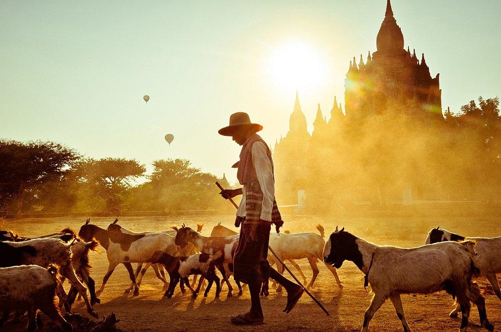 Фермер из Багана — города двух миллионов храмов и пагод