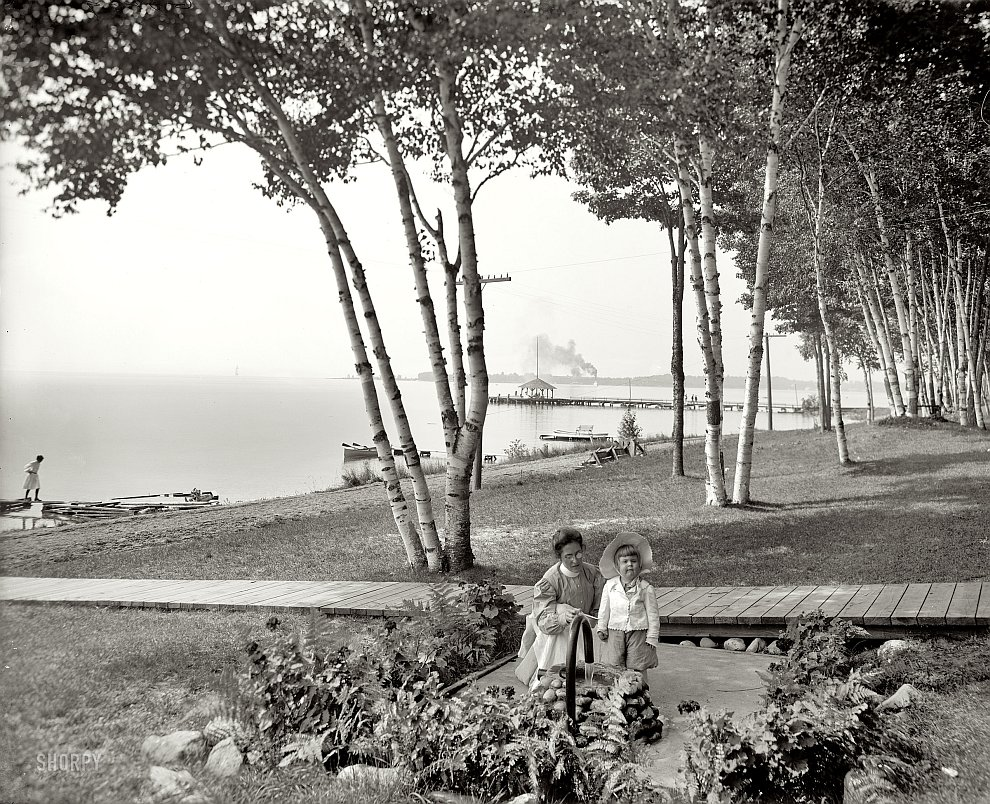Березы и залив в штате Мичиган, 1906 год