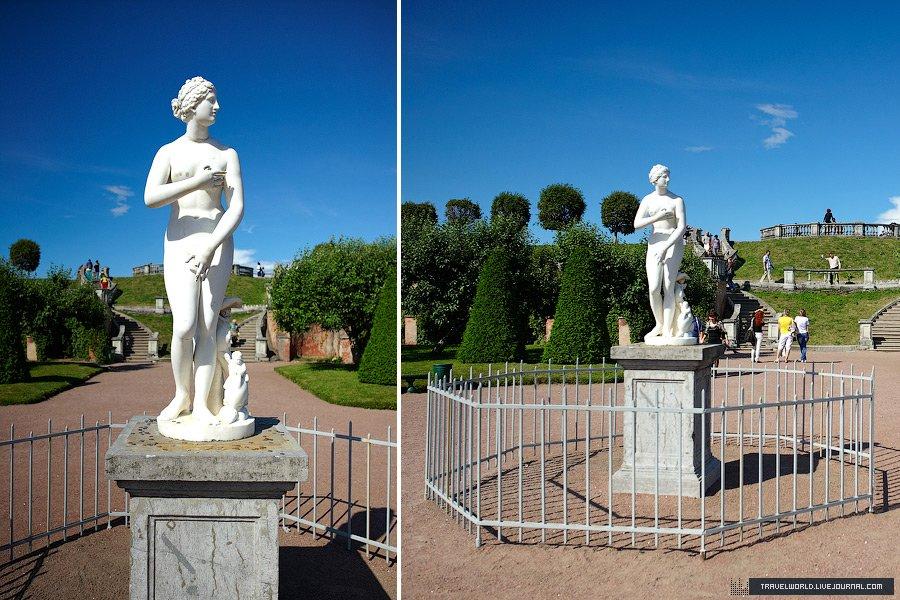 Сад Венеры