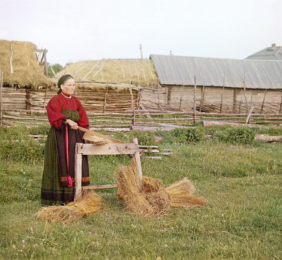Курганская область. Крестьянка мнет лен, 1909 год