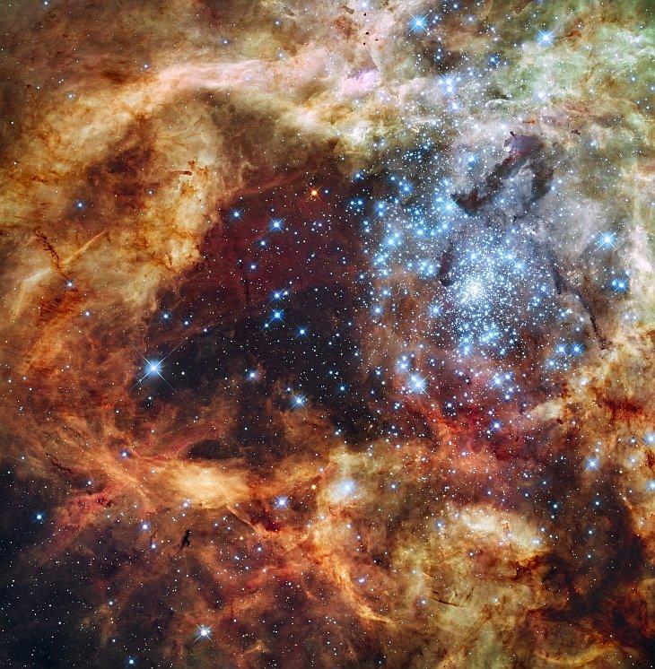 Звездный кластер R136