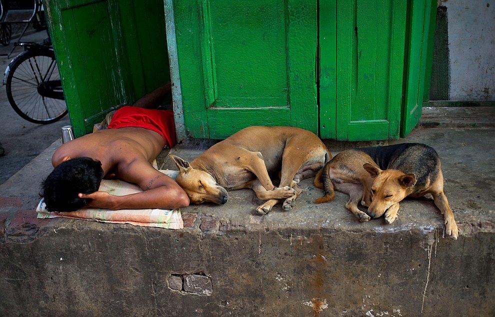 Массовый сончас в Калькутте, Индия