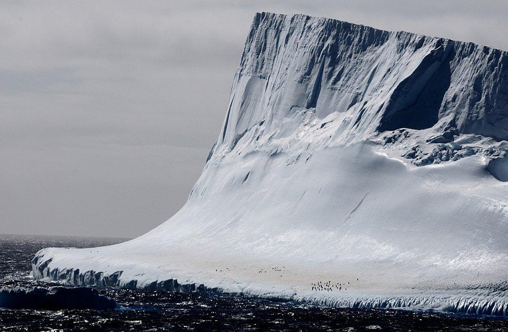 Огромный айсберг недалеко от Антарктического полуострова