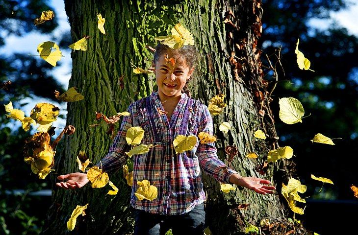 Осень в Арнеме, Нидерланды