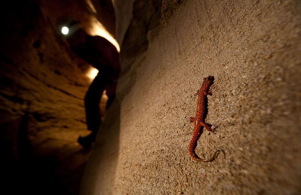 Исследование пещер