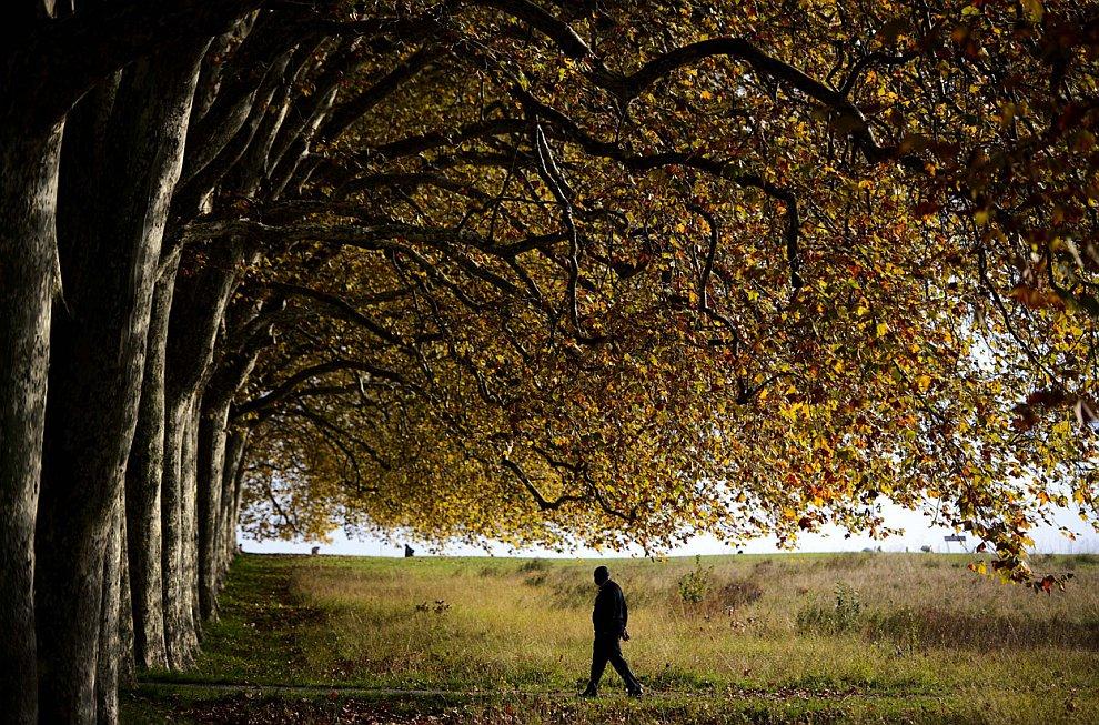 Осенние пейзажи под Лозанной, Швейцария