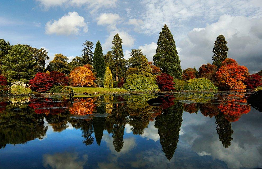Разноцветные деревья ландшафтного парка Шеффилд