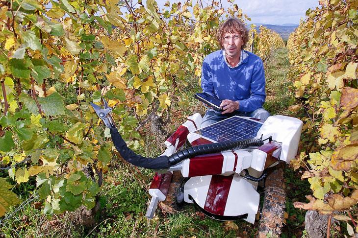 Французский инженер Кристоф Миллот с прототипом робота Wall-Ye, предназначенным для подрезания виноградной лозы