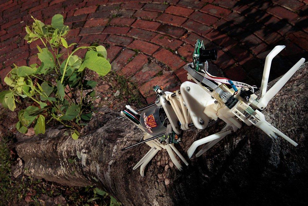Робот-древолаз
