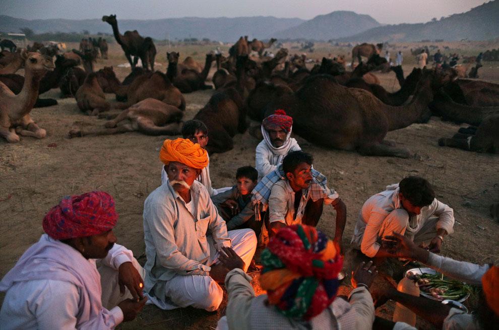 Самая большая в мире ярмарка верблюдов
