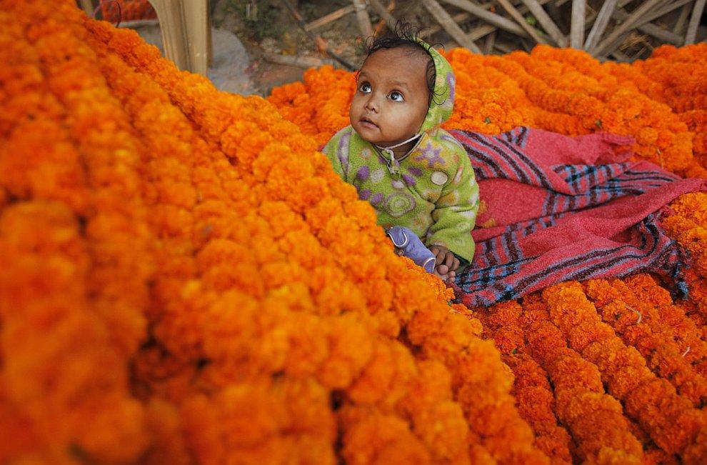 В каждом районе Индии празднование фестиваля огней Дивали имеет свои особенности