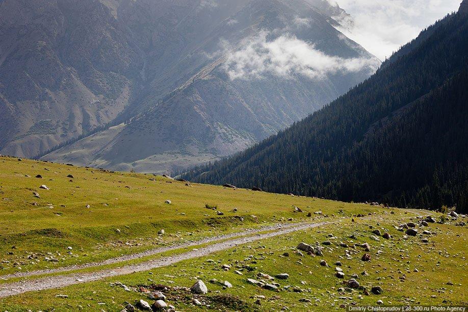 Горная долина Джууку и киргизско-альпийские луга